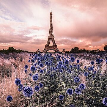 Eiffel Tower, Paris - France  by amorphousbeing