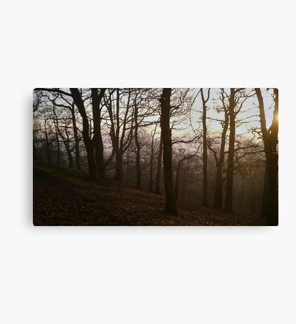 Foggy Sunset Canvas Print