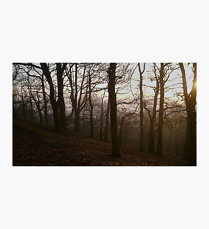 Foggy Sunset Photographic Print