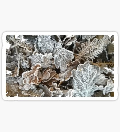 Frosted leaves - fluid edge Sticker