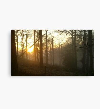 Golden sunset - foggy hillside Canvas Print