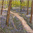 Bluebells - Frank's Wood - Art by Poppy-Art