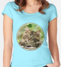 Cute Maine Coon Cat Kitten Photo Portrait Women's Fitted Scoop T-Shirt