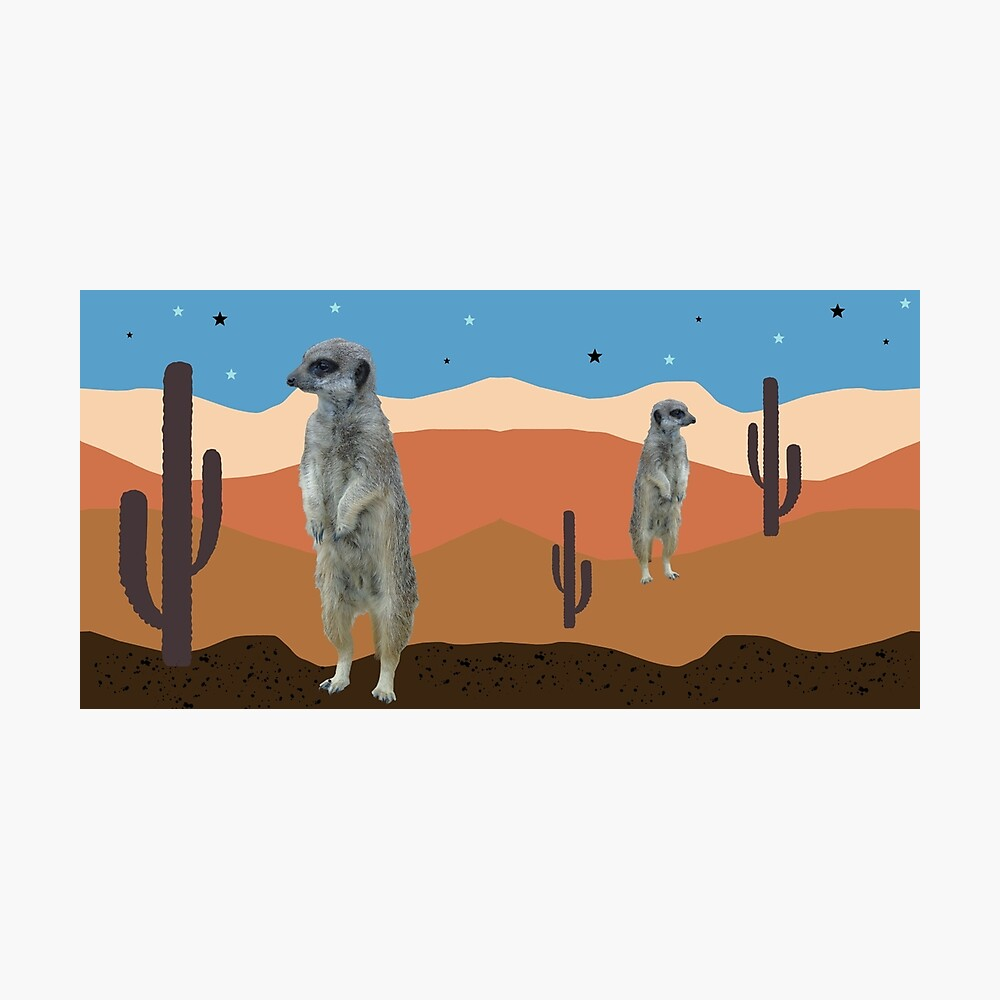 Desert Meercats and Cactus Photographic Print
