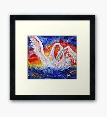 Swan Sensation Framed Print