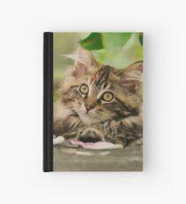 Cute Maine Coon Cat Kitten Photo Portrait Hardcover Journal