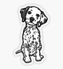 Dalmatian White Grey Spots Transparent Sticker