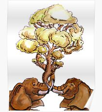 Baobab Fusion Póster