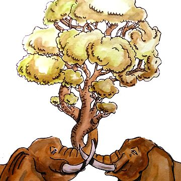 Baobab Fusion de laramaktub