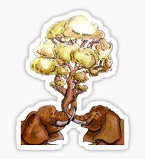 Baobab Fusion Pegatina