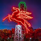 Dallas Pegasus  by josephhaubert