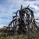 Gnarly Tree/Redmond by Richard Bozarth