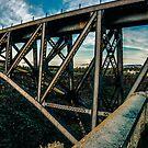 Train Trestle /Redmond by Richard Bozarth