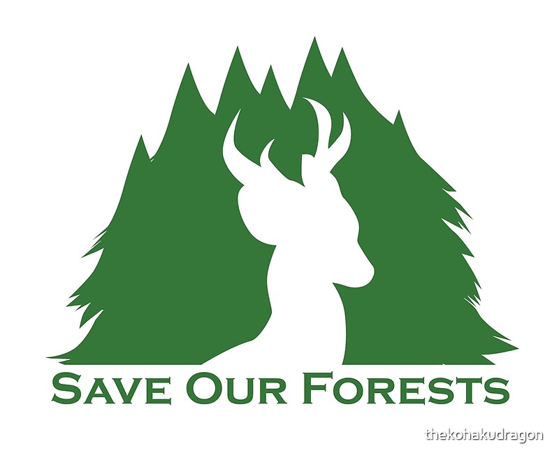 essay on save our forests