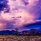 Clouds Show/Terrebonne by Richard Bozarth