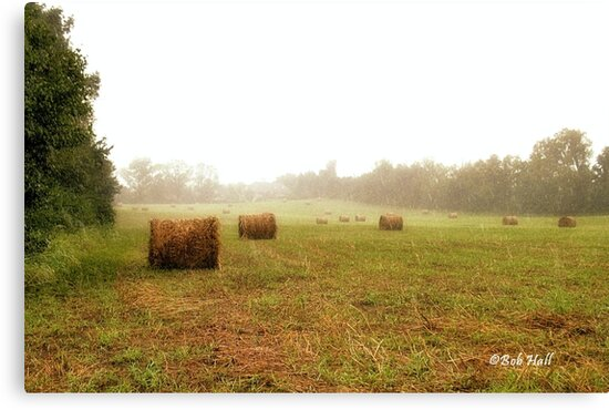 """""""Bales: Here, and There""""... prints and products by Bob Hall©"""