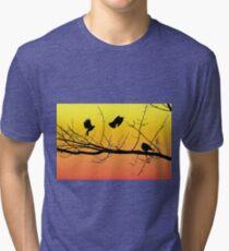 Sunset Birds Inflight Tri-blend T-Shirt