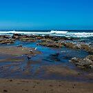 Beachy/Lincoln City by Richard Bozarth