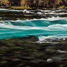 Wizard/Metolius River by Richard Bozarth