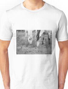 Horses Eating Unisex T-Shirt