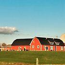 Summer Farm Scene by Graphxpro