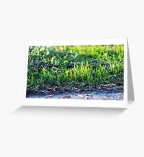 Grass Love Greeting Card