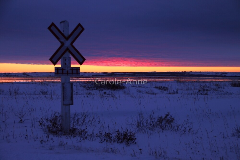 Indigo Sunset: The Crossing  by Carole-Anne