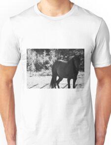 Black and white horse photo Unisex T-Shirt
