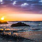 Splash: Sunset at Sands Beach by Brian Haidet