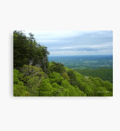 Powell Valley from Pinnacle Overlook Canvas Print
