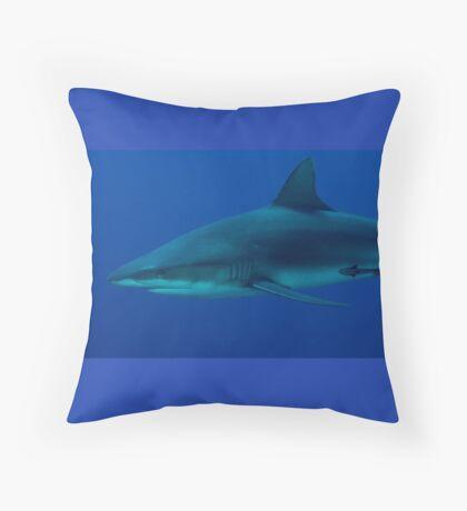 Sleek Throw Pillow