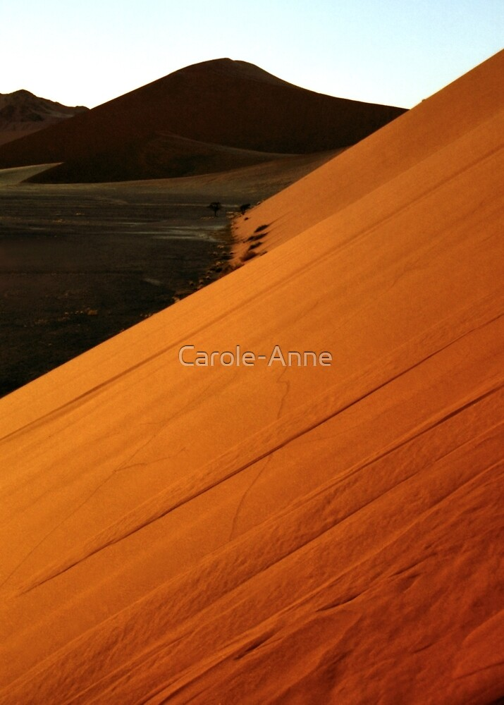 Glowing Slopes by Carole-Anne