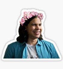 Flower Crown Cisco Sticker