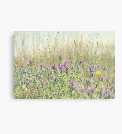 Nature's Grafitti Canvas Print