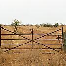 ornate farm gate by Janine Paris