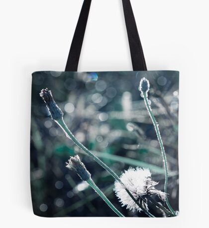 Sunlit from Heaven Tote Bag