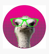 Clever Ostrich Photographic Print