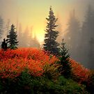 The Reds Are Here  ~ Fall Colors ~ by Charles & Patricia   Harkins ~ Picture Oregon
