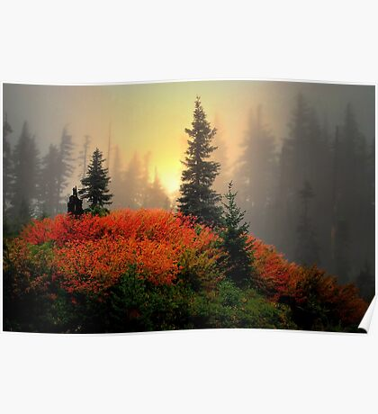 The Reds Are Here  ~ Fall Colors ~ Poster