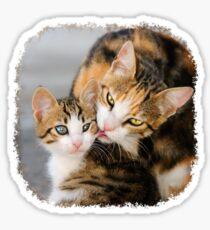 Mother Cat Loves Cute Kitten Sticker