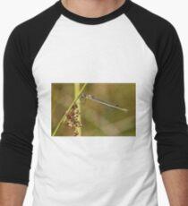 Damselfly Men's Baseball ¾ T-Shirt