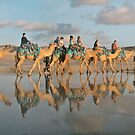 cable beach sunset camel  by Elliot62