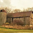 Old Barn with a Wooden Silo by Graphxpro