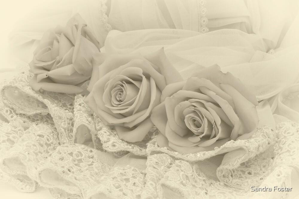 Tenderness by Sandra Foster