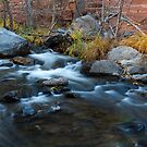 Upper Oak Creek  by photosbyflood