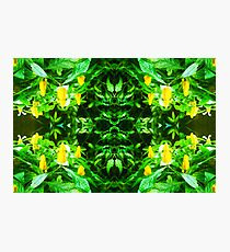 Tropical Flower - pattern Photographic Print