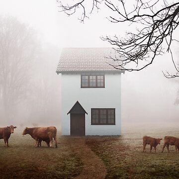 Country House In Mist by Kilbracken