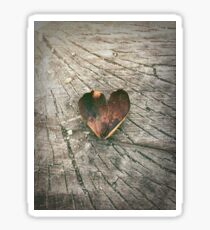 Heart in the Woods Sticker
