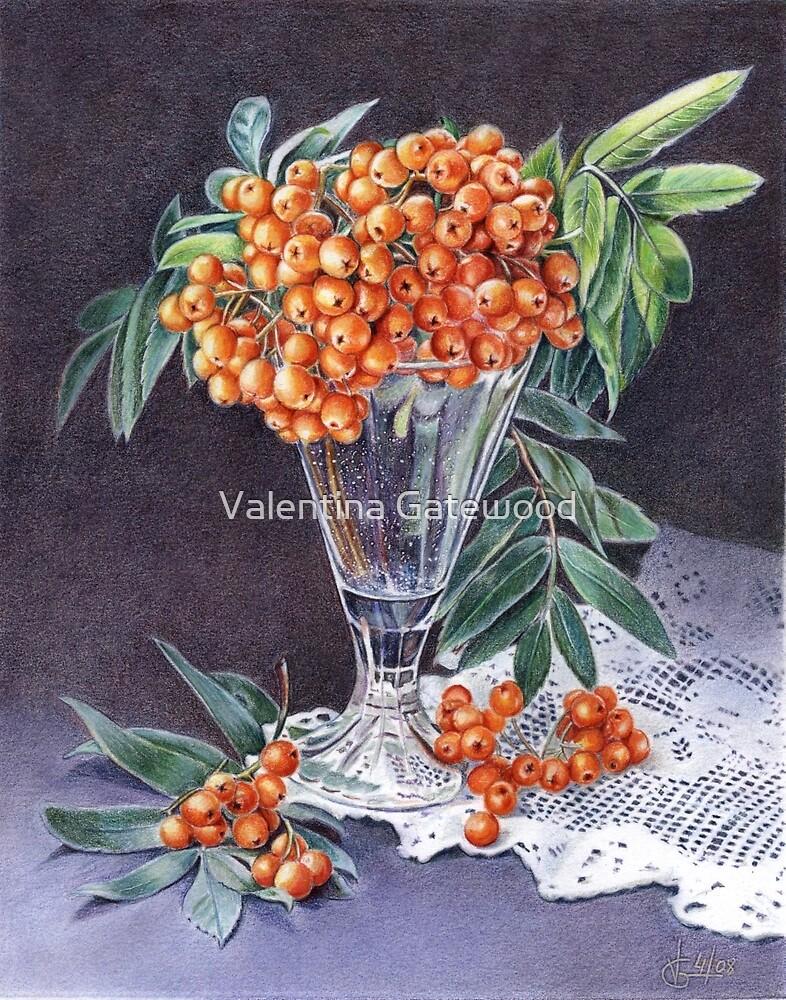 Mountain Ash by Valentina Gatewood