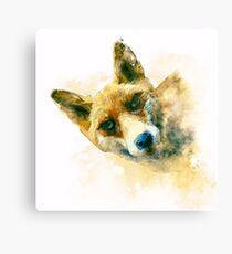 Fox watercolor illustration Canvas Print